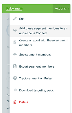 Audiense Insights - Add segment members to an audience