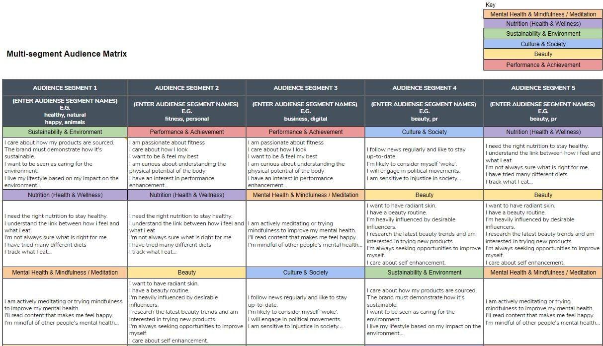 Multi-segment audience(buyer persona) matrix example for UK vitamin& supplements industry
