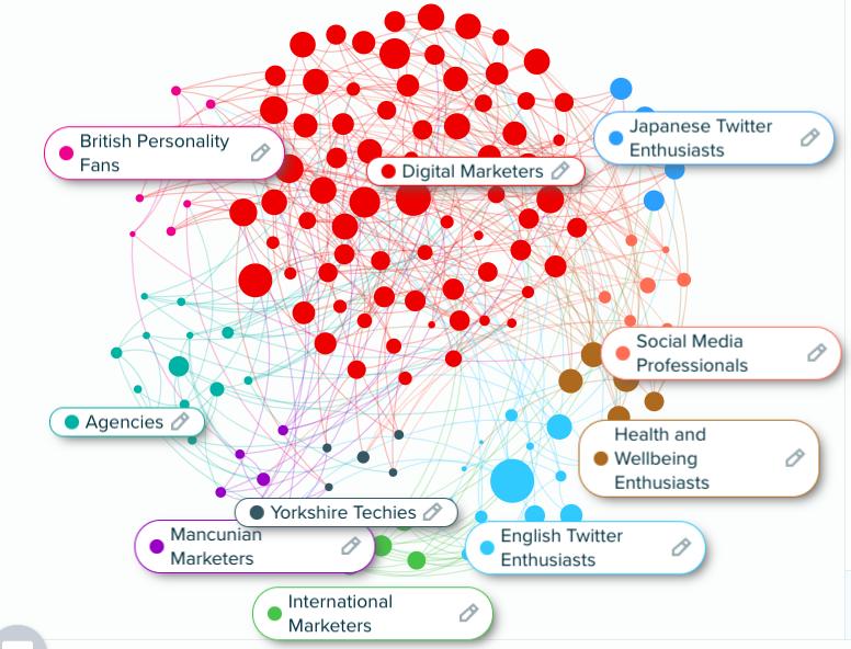 Audiense Insights - Social Buzz Awards - Segments Distribution
